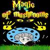 Magic Of Mushrooms